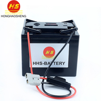 Customized rechargeable Battery waterproof 50Ah 24V 18650 electric fishing device with smart bms