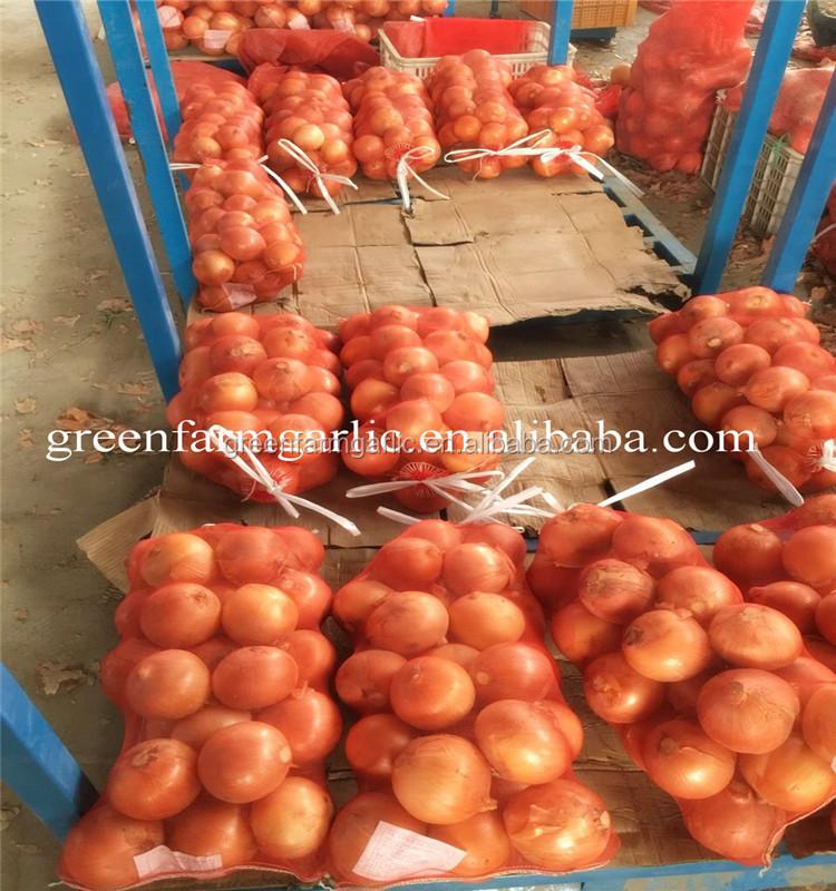 fresh yellow onion to South America - Arisemacro
