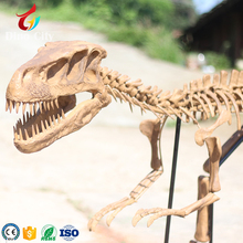 Replica Fossils Dinosaur Life Size Dinosaur Skeleton For Sale