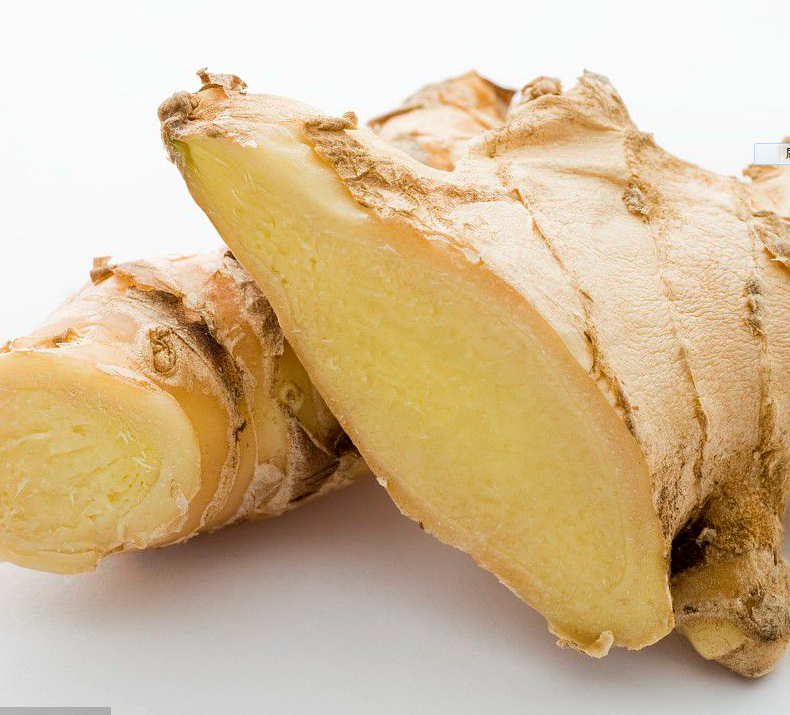 Fresh Bulk Organic Ginger for Sale wholesale GINGER