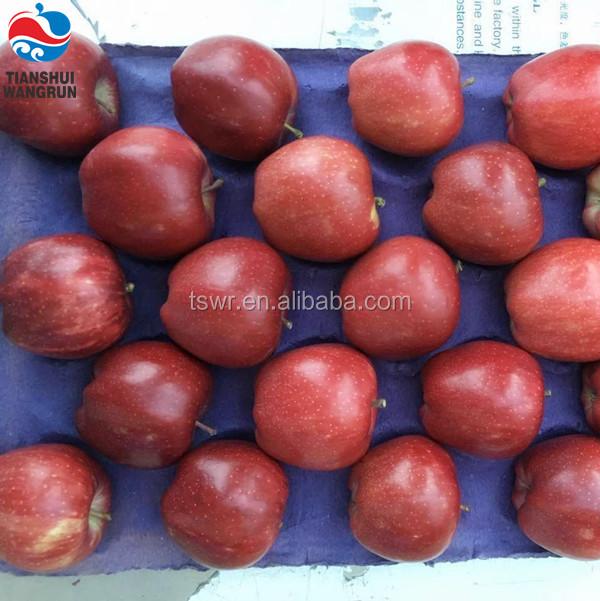 Apple Type Pome Fruit Fresh Top Red Huaniu Apples Distributor - Buy Apple  Type Fruit,Pome Fruit Apple,Apples Distributor Product on Alibaba com