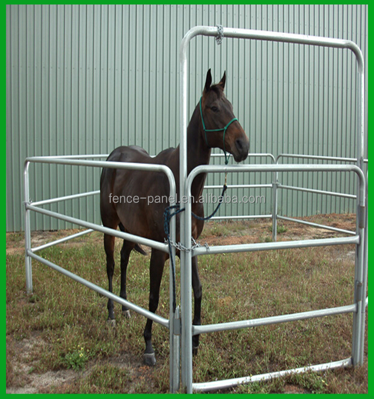 photo com of horse feeders for poly feeder rack horses x hay