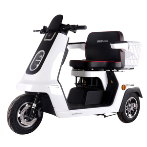 EEC Approved Three Wheel Electric Scooter for The Elderly