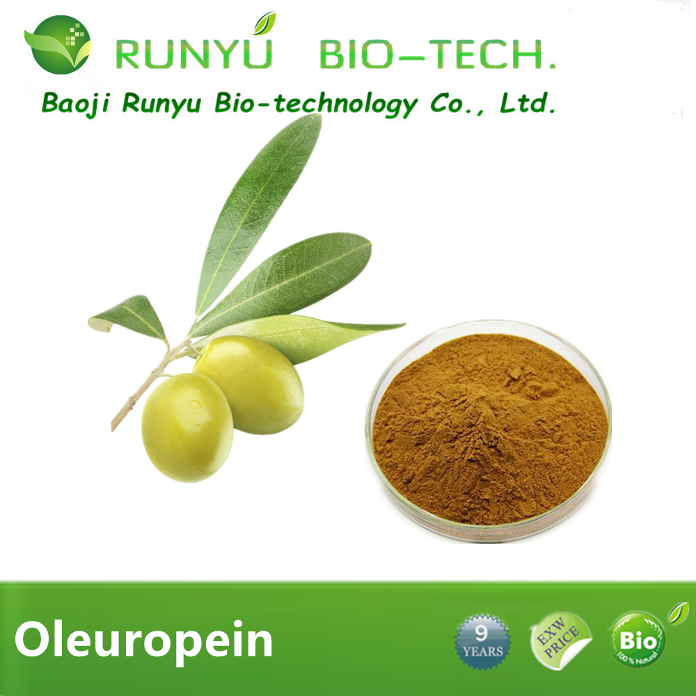 Wholesale Olivem powder ,olive extract powder with 40% Oleuropein ,olive leaf extract, antioxidant