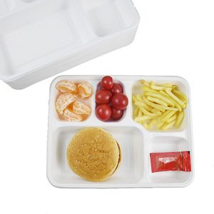 Custom sizes Eco-friendly disposable lunch box / pulp tray with lid / paper tableware
