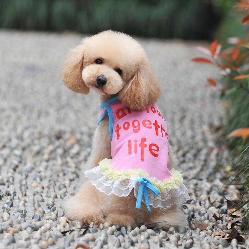 2016 Бросился Продажа Новый Собака Кошка Лук Туту Платье 100% хлопок Собака Кружевные Юбки Собака на высокого класса атмосфера класса преображение