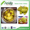 green pickled whole pepperoncini pepper in brine with best price