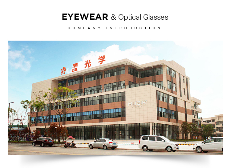 RGA036 custom gradient acetate latest glasses frames for girls