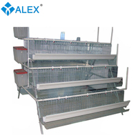 new condition automatic poultry layer chicken egg cages for sale china