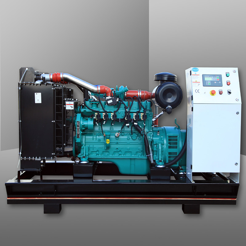 New products high quality 125KW Natural Gas Engine for Generator