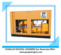 200kW 250KVA Gas Engine Generator for Silent Type