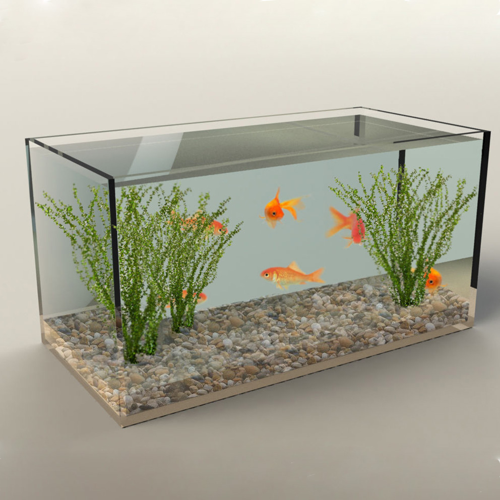 Fish aquarium price in pakistan - Aquarium Tank Aquarium Tank Suppliers And Manufacturers At Alibaba Com