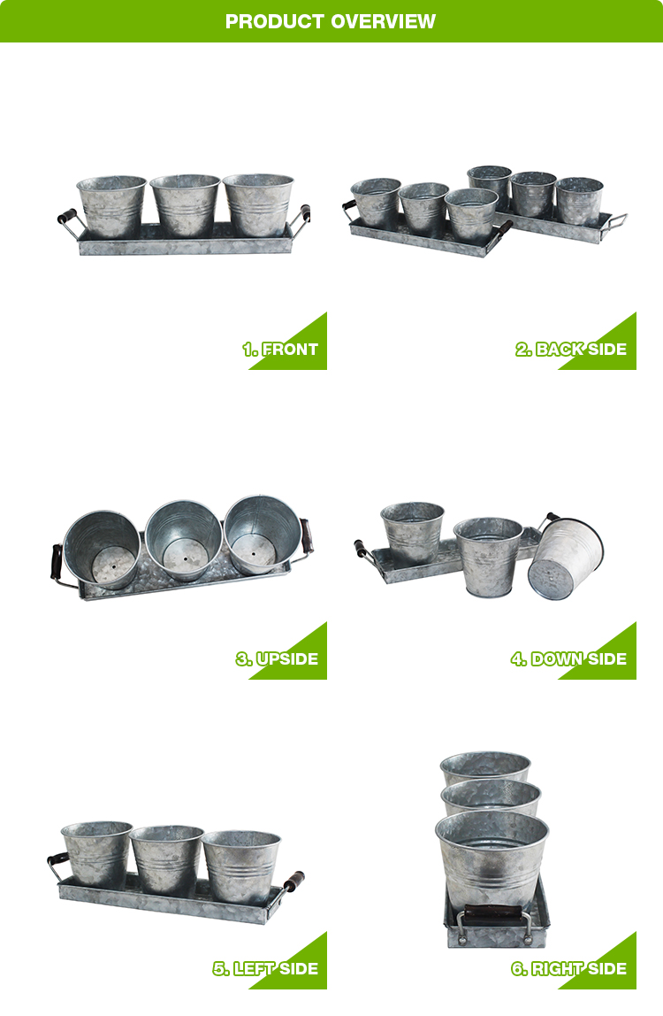 Galvanized Metal Garden Kitchen Herb Pots Set