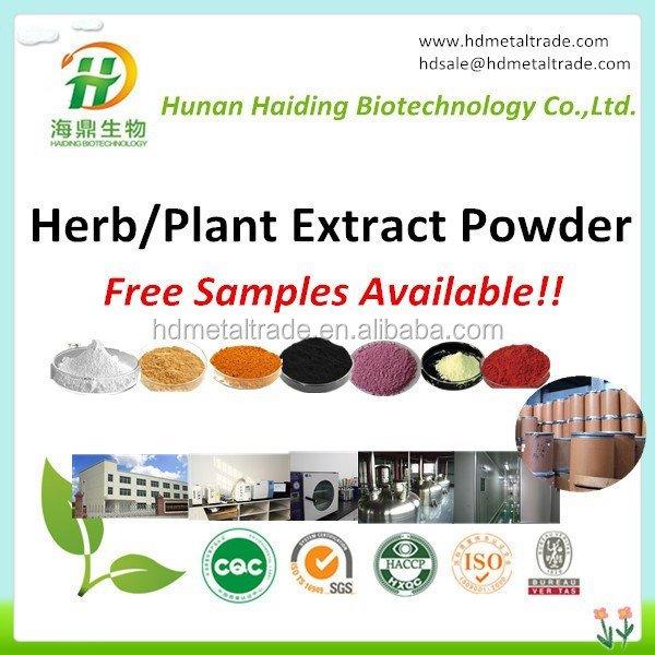 Hot Selling Natural Buchu Leaf extract