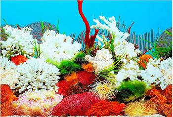 3d Coral Aquarium Background Poster Pvc Fish Tank Decorations Landscape Buy Photo Background Aquarium 3d Background Coral Rojo Precio Product On