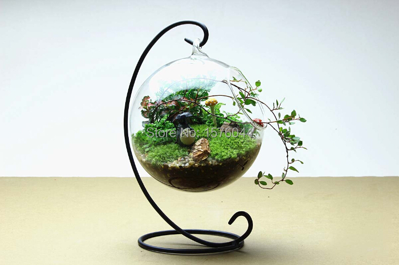 Online Buy Wholesale Terrarium From China Terrarium