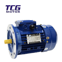 ELECTRIC MOTOR, Y series powers, 3-phase
