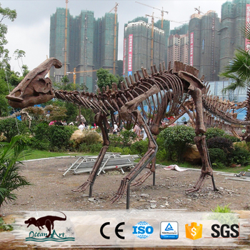 OA5171 Ocean Art high quality dinosaur skeleton