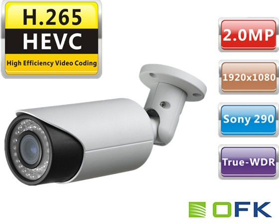 Full HD Outdoor H.265 Security WDR POE ip digital CCTV camera module