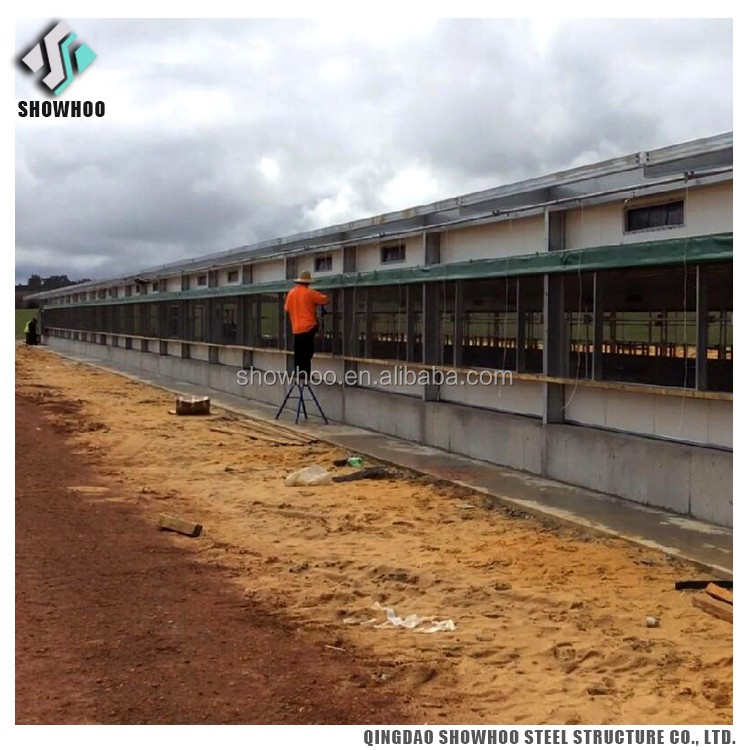 Steel Structure Design Poultry Farm Shed Structures