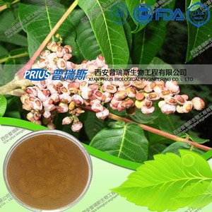 Tannin extract powder,gallnut extract Tannic acid90% 92% 96%