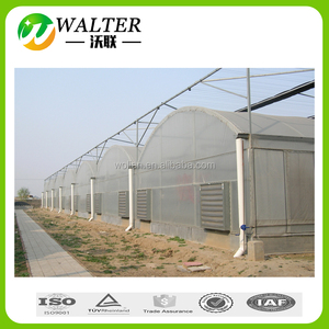 Agrotime mushroom greenhouse with greenhouse film plastic/greenhouse  plastic sheet