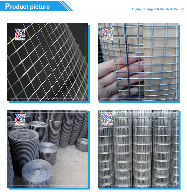 10 Gauge Hot Dipped Galvanized Welded Wire Mesh Price