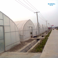 Plastic Greenhouse Tunnel For Sale