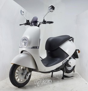electric scooter 60V india