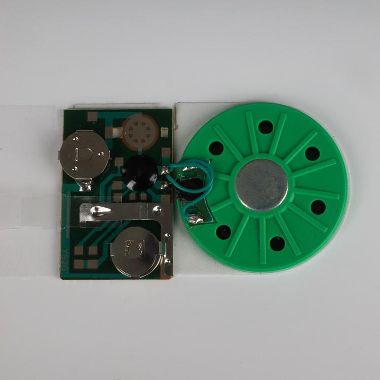 Music module chip 009