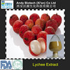 High Quality 20:1 Lychee Seed Extract