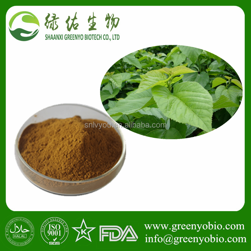 Factory Supply High Quality Mulberry Leaf Extract Powder