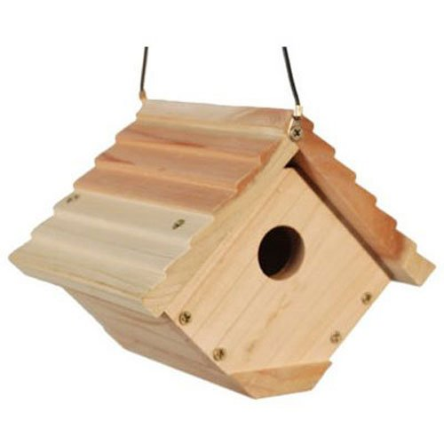 Handmade eco friendly madeira birdhouse