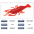 Colorful shrimp soft plastic fishing lures fishing baits