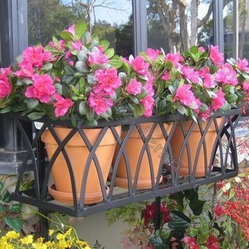 Garden French Style Wrought Iron Window Box Cage