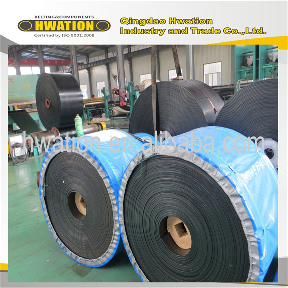 Top level customized ep wire mesh conveyor belt