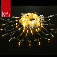 2017 Festival Lights 120l Led Net Lights,Connectable,Warm White ...