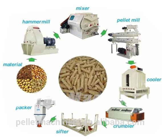 Poultry Farm Needed Chicken Feed Pellet Mill