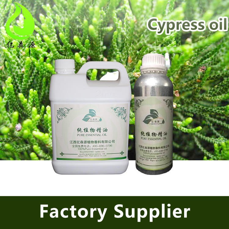 Bulk Pure Organic Aromatic Essential Oil Cypress Oil Of Factory Prices