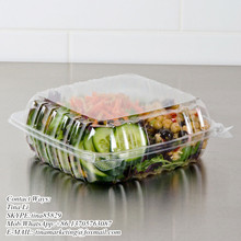 Cheap Price Clamshell Plastic Cake Container Carrier with Hinged Lid, Clear Plastic Take Out Food Packaging Box for Salad