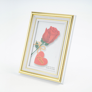 Fine Workmanship Custom Gold Edge Plastic Photo Frames Made in China