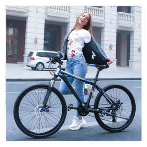China Manufacture Export Cheap Aluminum Alloy Mountain Bicycles