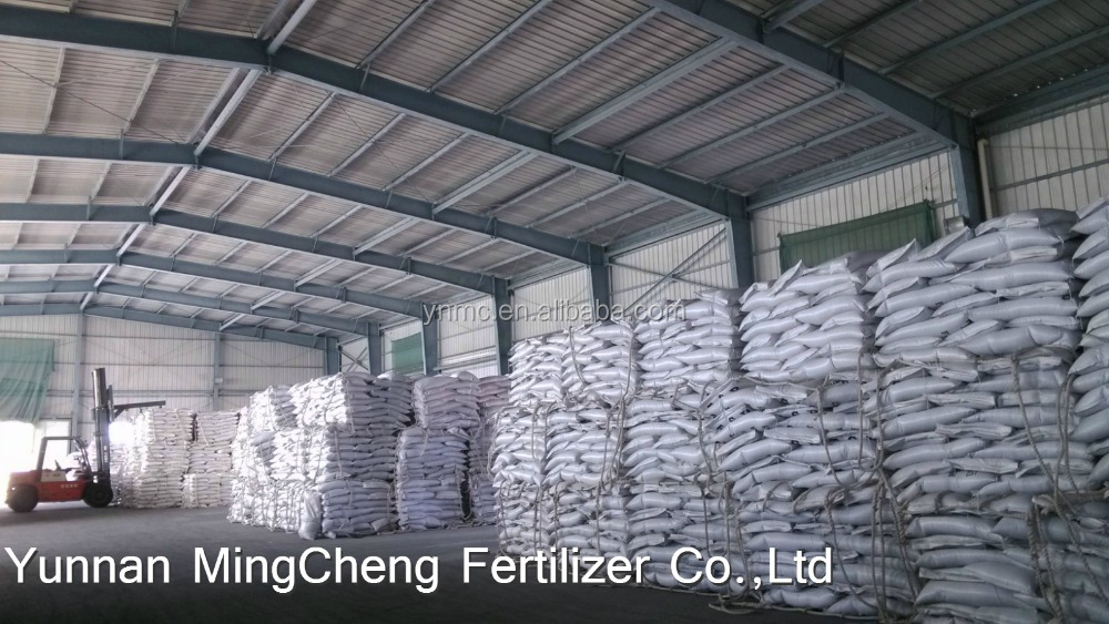 Promotes root growth and maturity fertilizer TSP 46 granular
