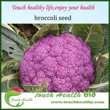 2017 Touchhealthy supply It take 80 days from sowing to harvest.Gorgeous purple hybrid cauliflower seeds/broccoli seeds