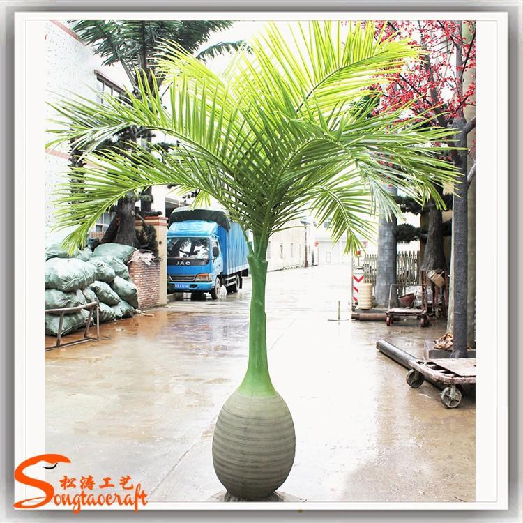 Tipos+De+Palmas+Tropicales Todo tipo de palmera artificial de plantas