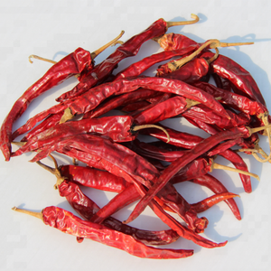 CHARACTERISTIC Color and 2 YEARS Shelf Life Herbs and Spices dry red chilli