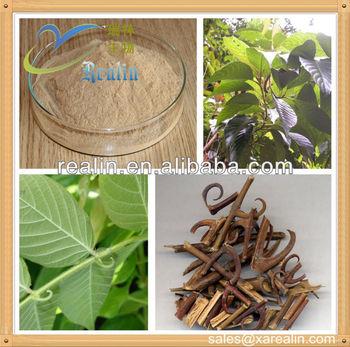 Herbal Extract Uncariae Rhynchophyllae Extract Rhynchophylline