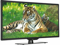 "Tiger star 32"" 32 inch LED TV tvled led tvs online TV led"