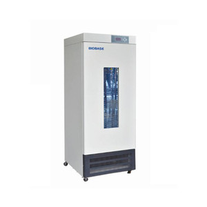 BIOBASE Stainless Steel High Quality Biochemistry Incubator