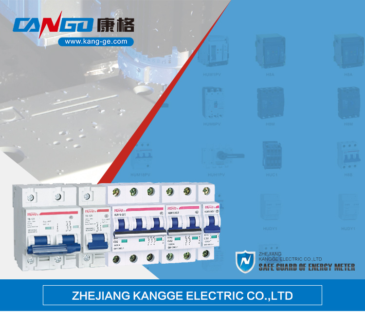 Best Brand Type Circuit Breaker AC 2 Phase 63 Amp MCB Manufacturer Price